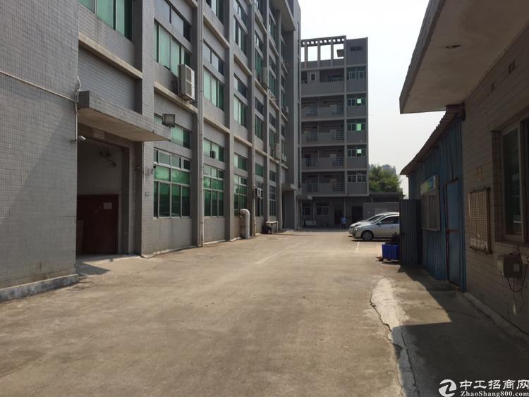 长安厦岗新出楼上带装修厂房400平方招租-图2