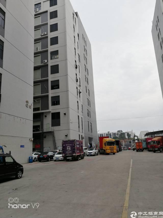 楼上600平米带5吨电梯厂房招租