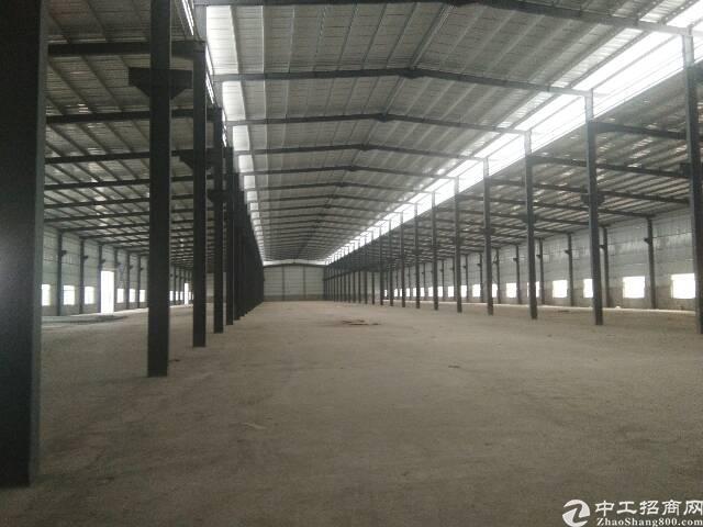 单一层钢结构厂房出租,10000平方米可分租