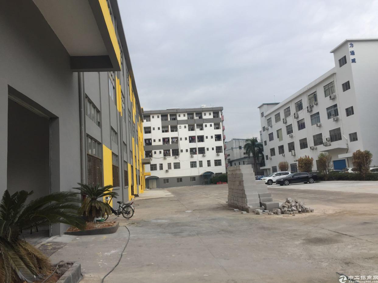 大浪华兴路边上新出一楼2000平厂房招租-图2