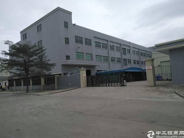 横沥西城标准厂房一到三层4200,宿舍1800办公楼600平