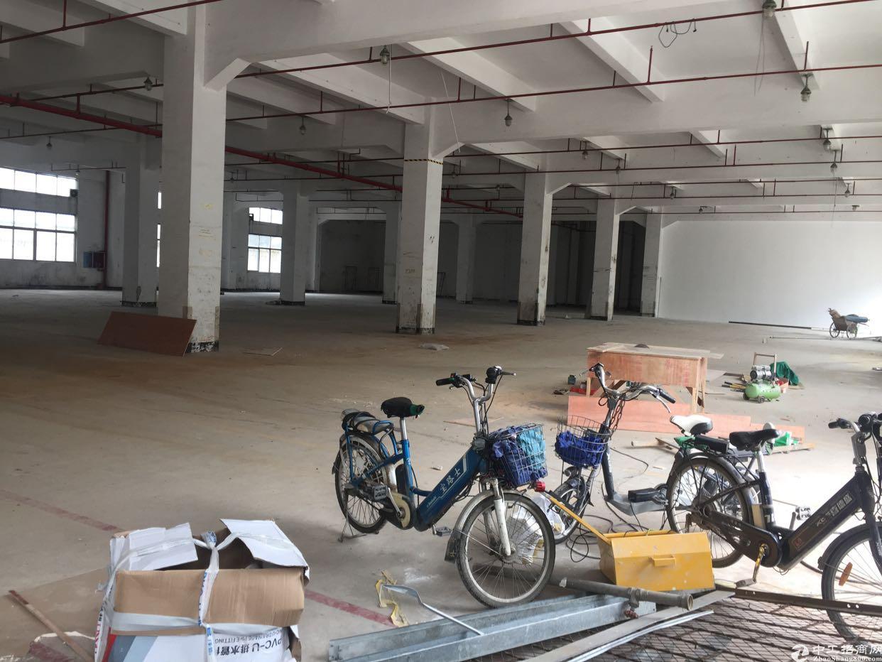 大浪华兴路边上新出一楼2000平厂房招租