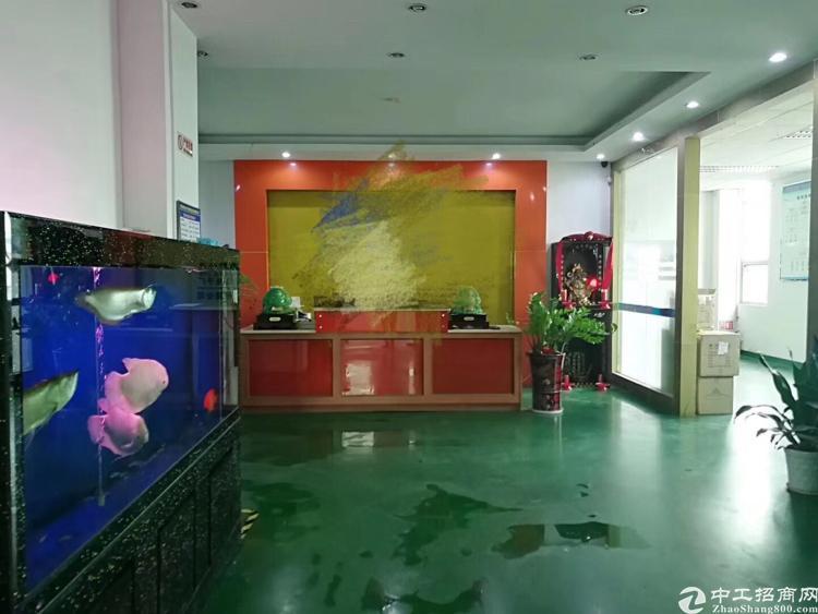 公明南光高速出口附近新出楼上整层2600平带豪华装修厂房招租