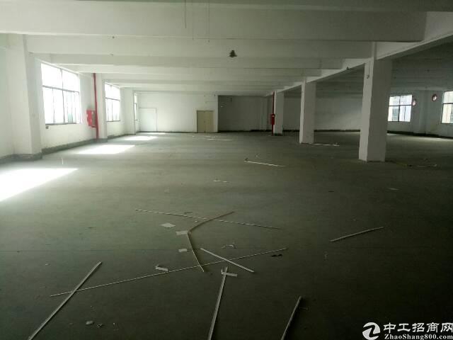 龙华大浪福龙路出口新出一搂1600平方厂房-图3