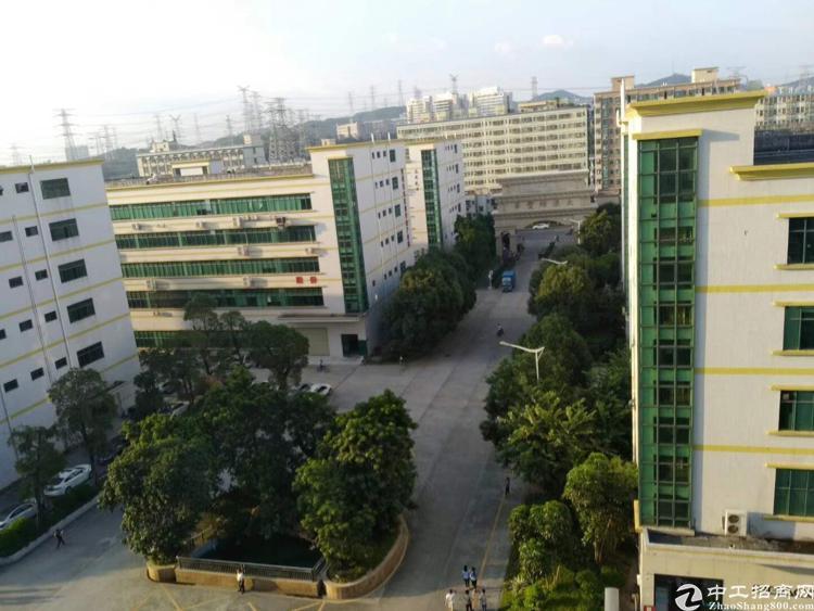 龙华大浪行政中心旁带装修红本独院5层8600平