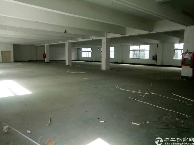 龙华大浪福龙路出口新出一搂1600平方厂房-图5