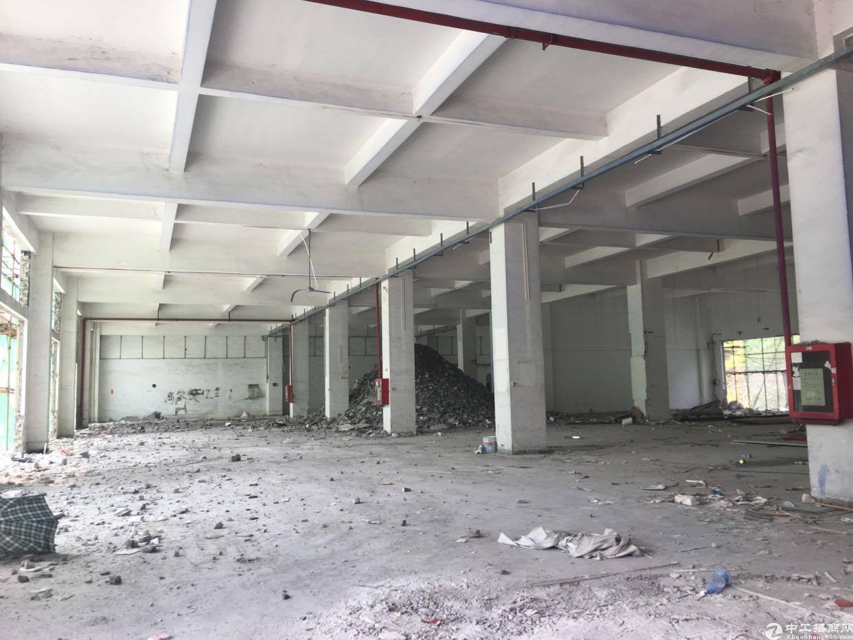 坂田杨美地铁站附近红本独门独院厂房15000平方面积实量