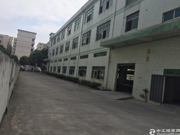 公明将石新围龙大高速新出独院厂房1到3层-图2