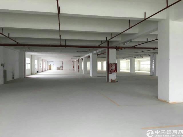 龙岗区独院厂房8900平米14元出租-图2