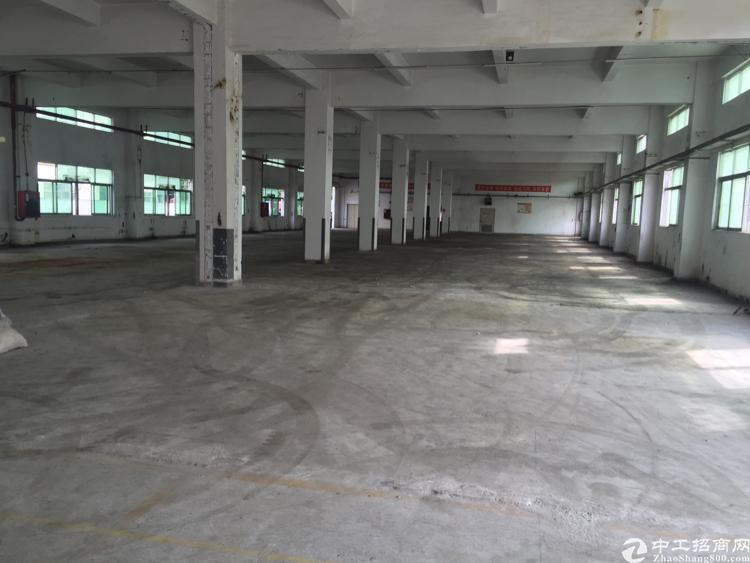 公明将石新围龙大高速新出独院厂房1到3层-图7