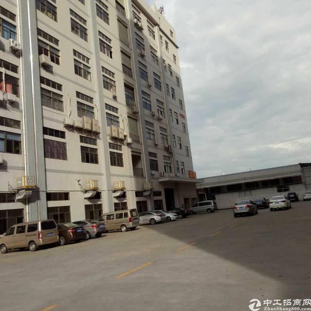 虎门怀德全新厂房,全新地板漆,带豪华装修办公室