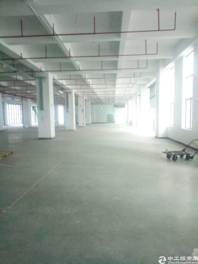 龙华大浪新出一楼2800平方厂房