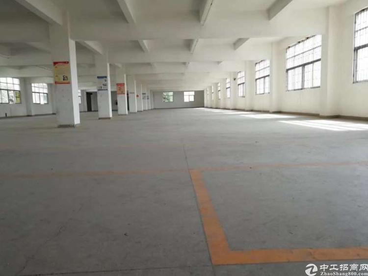 公明将石新围龙大高速新出独院厂房1到3层-图3