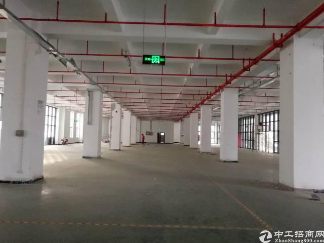 靓厂房1楼2800平,龙华区大浪福龙路出口旁新出科技园
