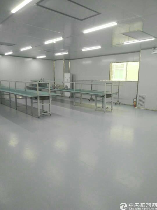 福永镇新和新兴工业区二楼无尘车间1350平厂房招租-图4