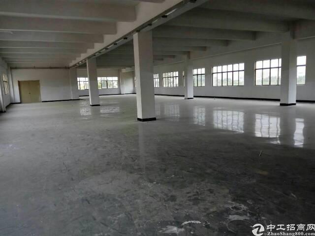 虎门镇北栅原房东二三楼共1600平方米