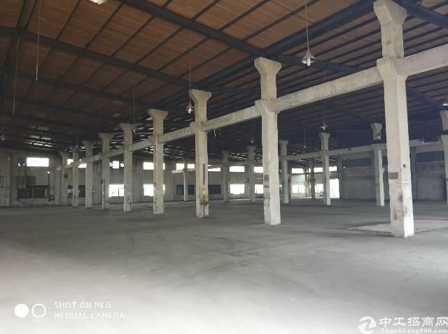 福永沿江高速新出9000平方钢构10米高