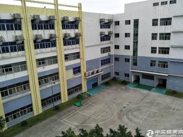 香港业主出售独门独户1万平方米