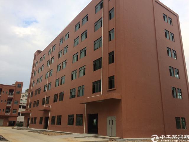 虎门南栅全新标准厂房,原房东,厂房1-6层6000㎡。