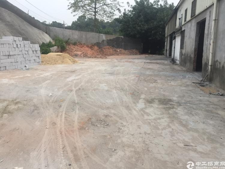 龙华天虹后面原房东钢构厂房-图3