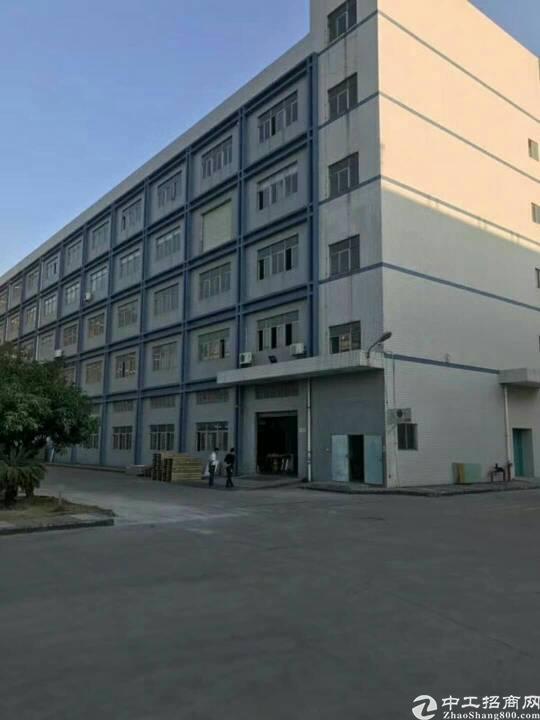 松岗大道边重工业厂房三楼2300平方带豪华装修
