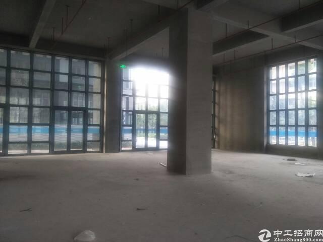 龙华高新科技园单层1350平方,原房东,无公摊-图4