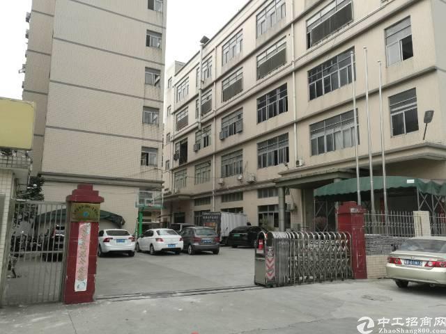 光明新区公明街道合水口汽车站附近
