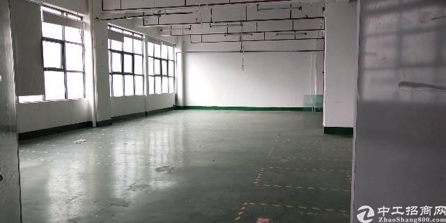 松岗楼岗大道南光高速附近楼上2000平高新厂房招租-图3