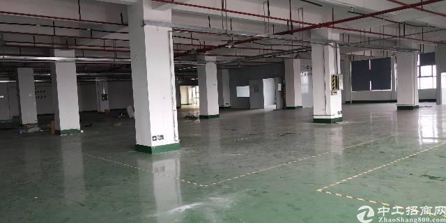松岗楼岗大道南光高速附近楼上2000平高新厂房招租-图5