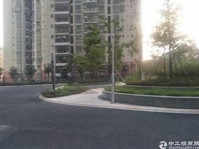 龙华高新科技园单层1350平方,原房东,无公摊-图5