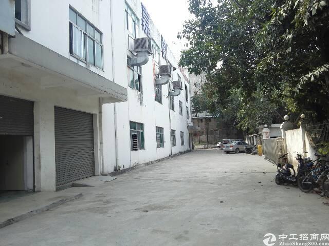 观澜新出标准厂房2200平方招租-图6