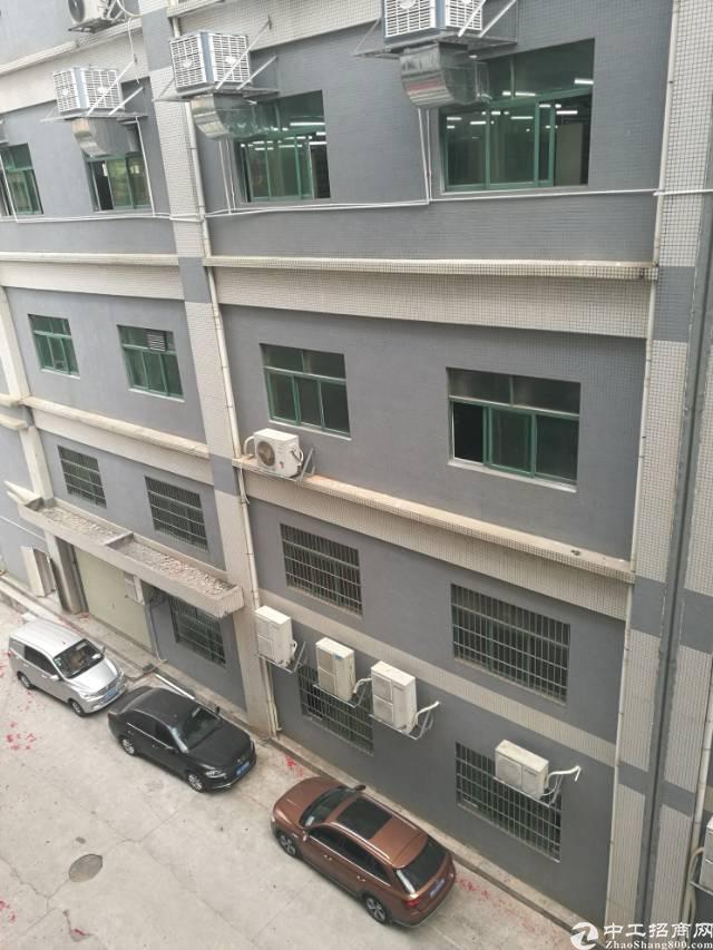 龙华龙胜地铁站新出红本厂房900平招租-图2