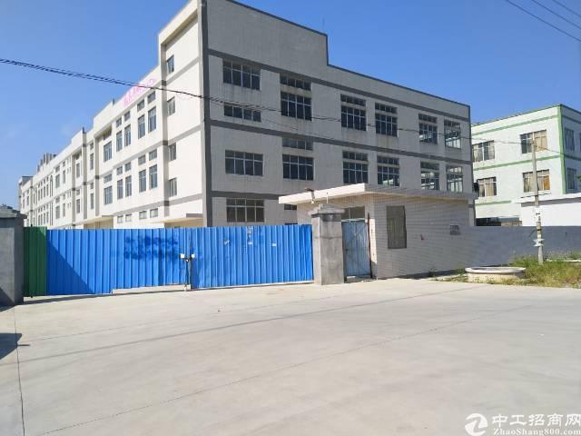 全新标准厂房空地大大大-图3