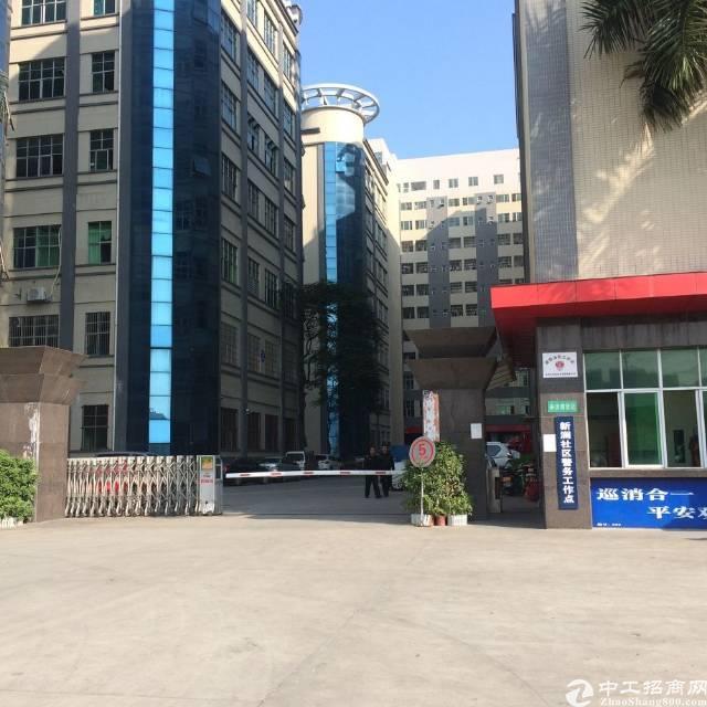 观澜福民新出4楼1850平方精装修厂房仅租19