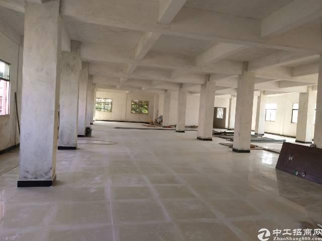 全新标准厂房空地大大大-图4