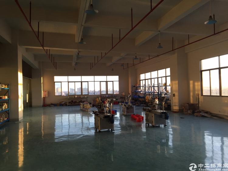 长安厦岗新出楼上带装修厂房400平方招租-图3