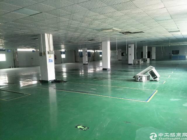 福永凤凰楼上1200平米厂房招租-图4