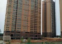 临深片区商务办公写字楼15万平方米