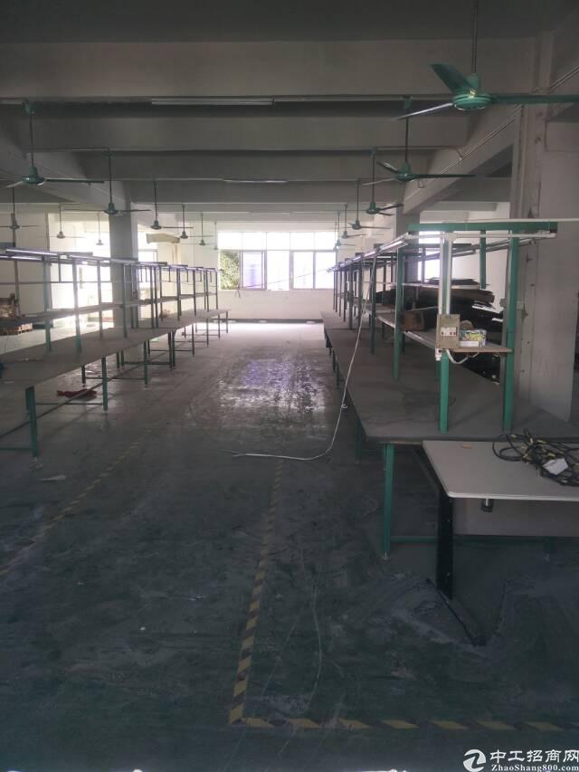 松岗楼上厂房960平米带装修出租-图2