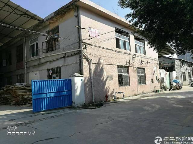 原房东独院分租1-2楼800平方