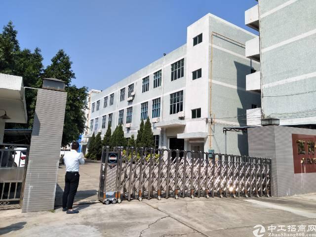 松岗镇中心附近四楼正常2260平带装修厂房出租-图3