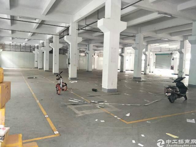福永塘尾地铁站一楼3300平米七米高带牛角18块租金真实房源