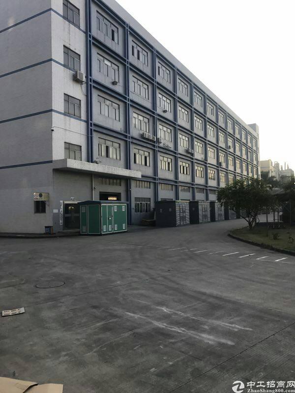 松岗新出独院厂房一楼6米高