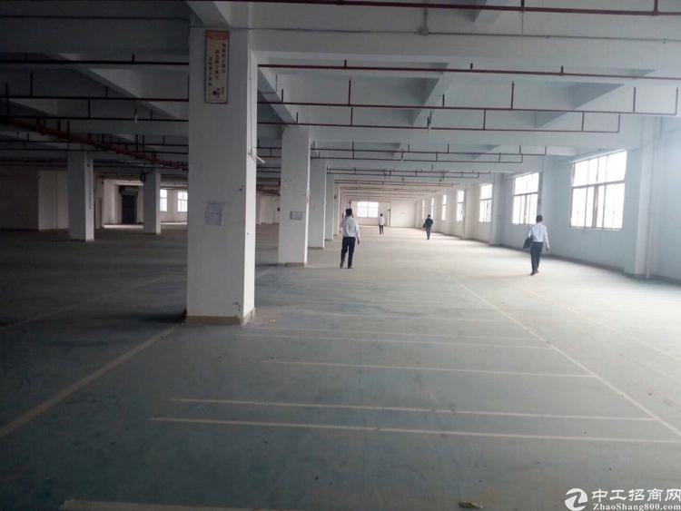 福永塘尾着科科技园2500平方带简单装修厂房招租
