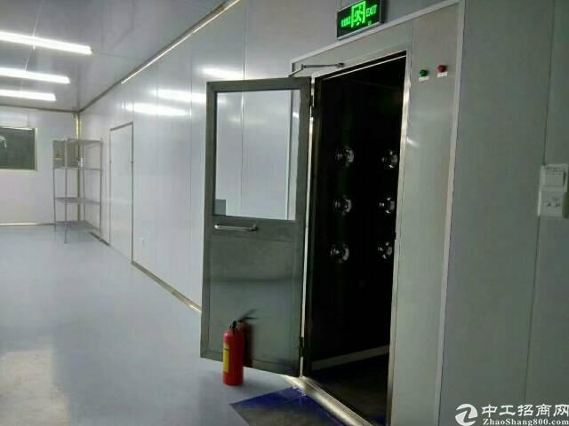 福永镇新和新兴工业区二楼无尘车间1350平厂房招租-图2