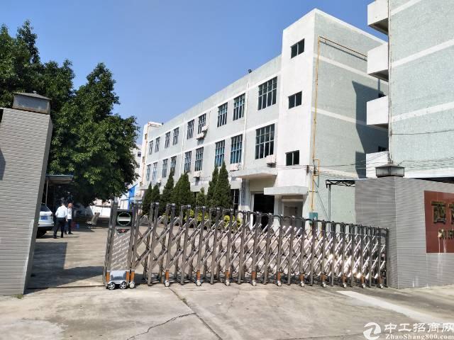 松岗镇中心附近四楼正常2260平带装修厂房出租-图2