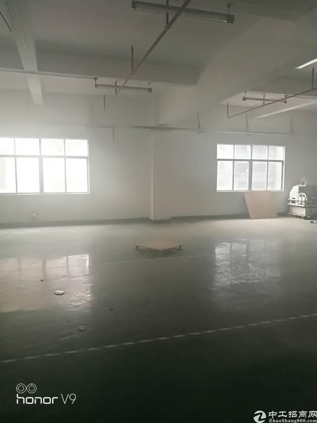 福永凤凰山工业园新出楼上1600平米带精装修厂房出租