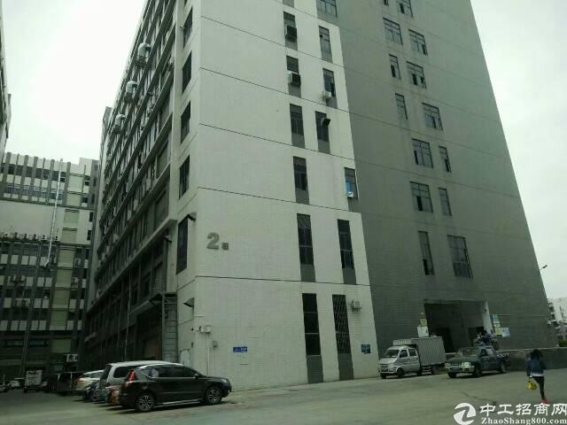 公明南光高速出口附近新出楼上一整层2600平方带豪华装修厂房