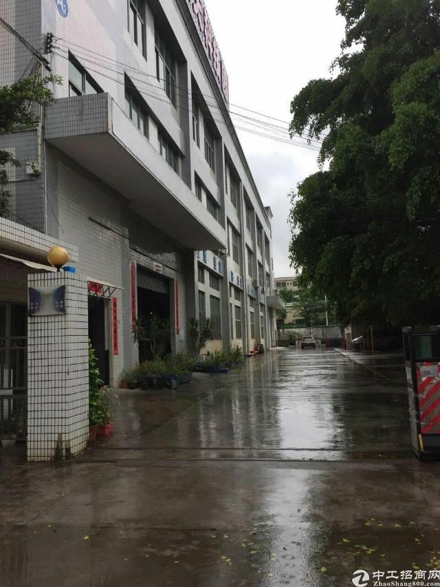 松岗宝安大道附近楼上600平带装修厂房分租-图3
