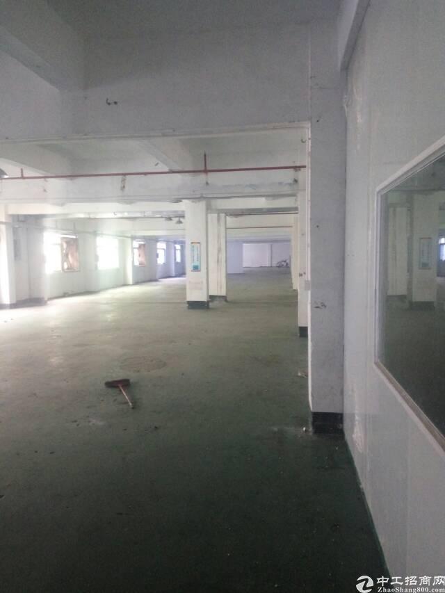 原房东标准一楼出租厂房